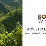 The enhancement of ecosystem services in the SOIL4WINE project