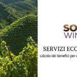 La valorizzazione dei servizi ecosistemici nel progetto Soil4Wine