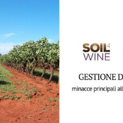 Managing and protecting soil in the vineyard: experience of the Soil4Wine LIFE+ project