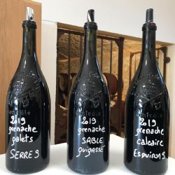 Tasting of wines of Grenache grapes grown on the three different types of soil