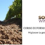 Tools and opportunities to improve soil management in viticulture