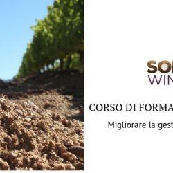Strumenti e opportunità per migliorare la gestione del suolo in viticoltura